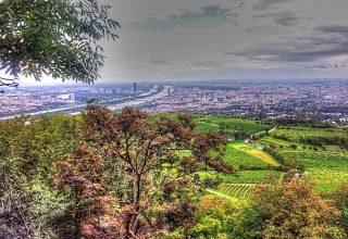 Viyana Kahlenberg Tepesi Avusturya