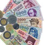 Macaristan Para Birimi